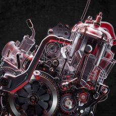 TRRS-RR-2021-Trial-Bike-motor-tr-trs